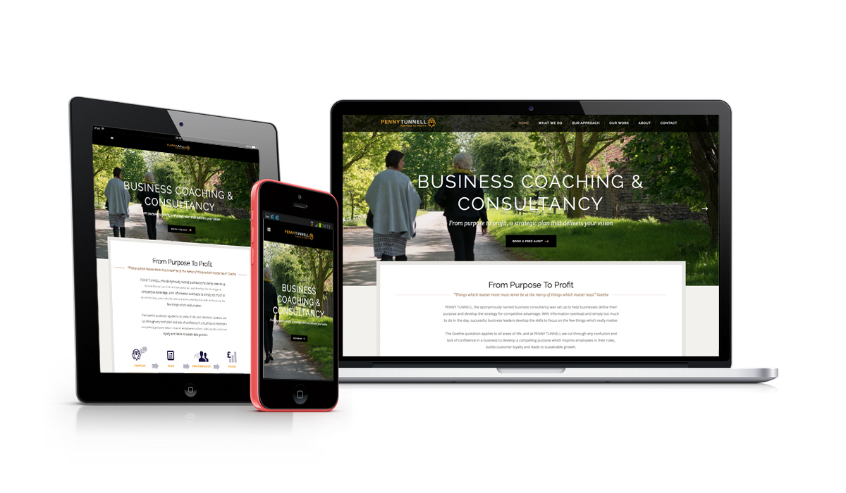 Penny Tunnel Responsive Website Design